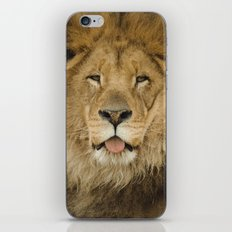 Face of a Lion iPhone Skin