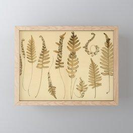 Botanical Brown Fern Framed Mini Art Print