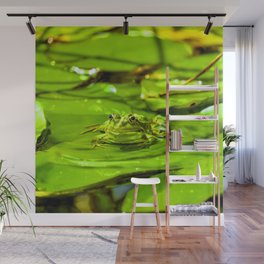 Frog On A Lily Wall Mural