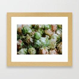 Fresh Hops Framed Art Print