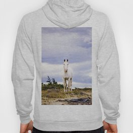 White horse, Torres Del Paine Hoody