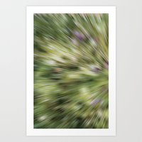 Light Rays Art Print