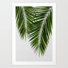 Palm Leaf II Art Print
