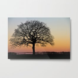 Lonely Tree Sunset Silhouette Metal Print