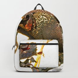 Ocean Fruit Backpack