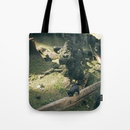 Temporary Happiness part 2 bear Tote Bag