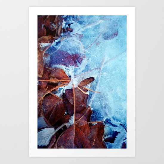 Winter frost Art Print