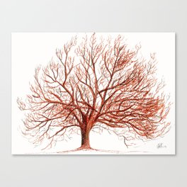 Lonely tree in autumn Canvas Print