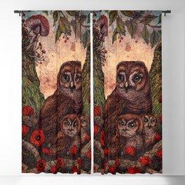 Tawny Owlets Blackout Curtain