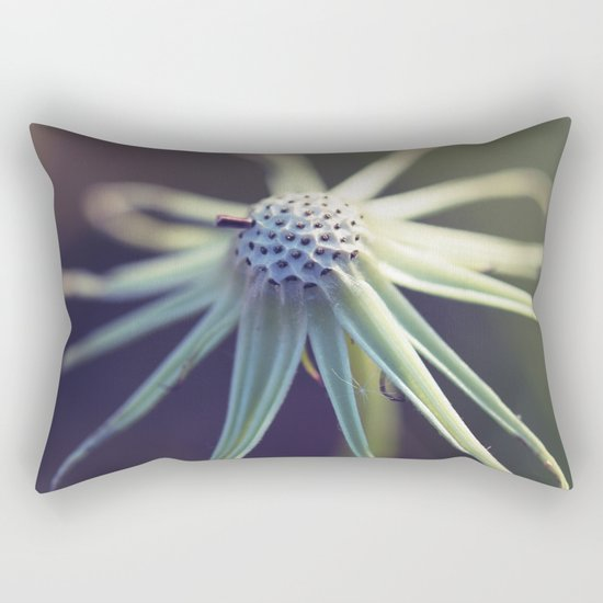 Circular Rectangular Pillow