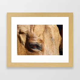 The Eye is a Window - Dun Mare Framed Art Print