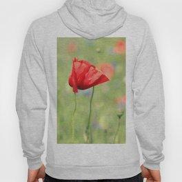 poppy flower no7 Hoody
