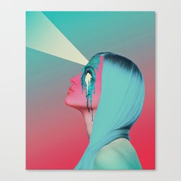 sight Canvas Print