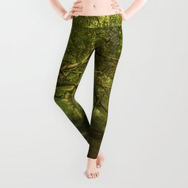 Fantasy Forest Painting Green Wood Leggings