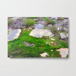 Volcanic Rock & Moss Metal Print
