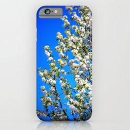 WhiteFlowerBleuSkies iPhone Case
