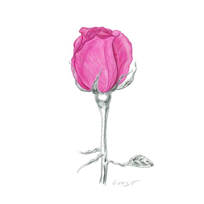 Rose 01 Botanical Flower * Pink Rose Bud: Love, Honor, Faith, Beauty, Passion, Devotion & Wisdom Duvet Cover