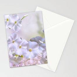 White phlox flowers blooming Stationery Cards