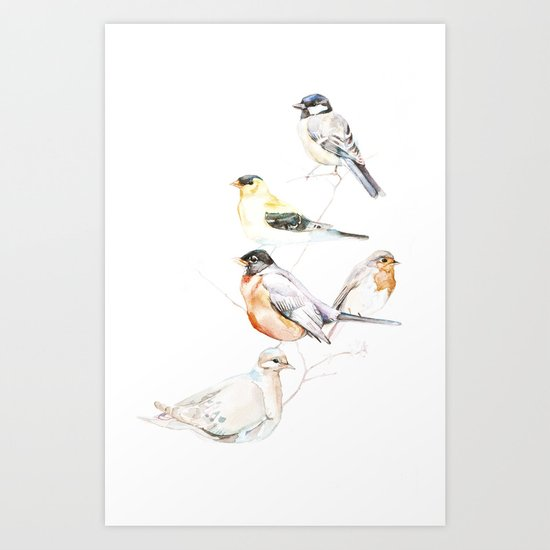 Birds of the Midwest Art Print