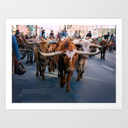 Denver National Western Stock Show Kick-of Parade 2018 Art Print