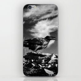 Raven and Clouds iPhone Skin