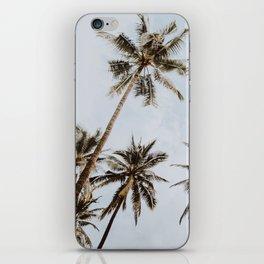 palm trees xiv / chiang mai, thailand iPhone Skin