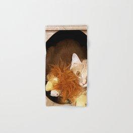 Kitty Cat in a Box Hand & Bath Towel