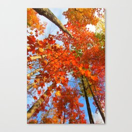 Famous fall 10 Canvas Print