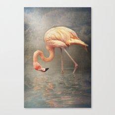 Walking in a dream.. Canvas Print