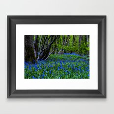 BLUE GLADE Framed Art Print