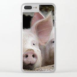 Pig Portrait Clear iPhone Case