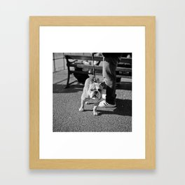 Who You Looking At? Framed Art Print