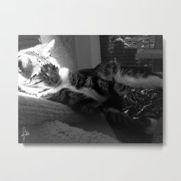 Leela's Crunchy Ball Metal Print