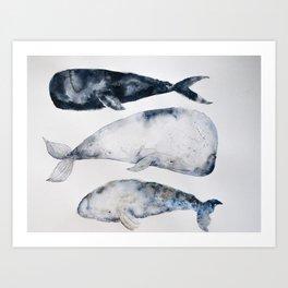 Whale 2 Art Print