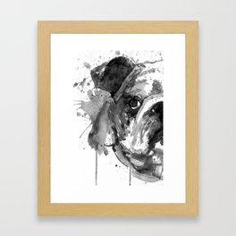 Black And White Half Faced English Bulldog Framed Art Print