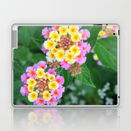 Southern blossoms Laptop & iPad Skin