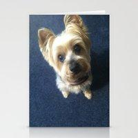 yorkie Stationery Cards featuring Yorkie by indigo2