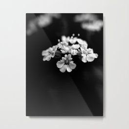 Light in the Void Metal Print