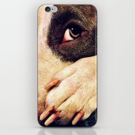 Pitbull profile iPhone Skin
