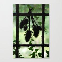 Bird House, Pickity Place, Mason NH Canvas Print