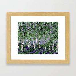 Summer Aspens Framed Art Print
