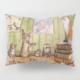 Classroom Pillow Sham