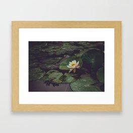 Pagoda Blossom Framed Art Print