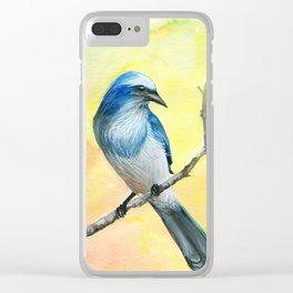 Scrub Jay Clear iPhone Case