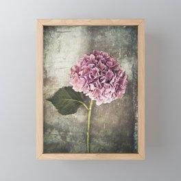 Hydrangea Framed Mini Art Print