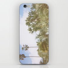 Paradiso Palm Trees Tropical Scene iPhone & iPod Skin