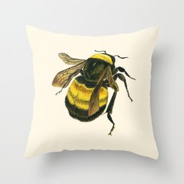 Vintage Scientific Bee Throw Pillow