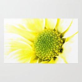 Yellow Daisy Macro Nature Photography Rug