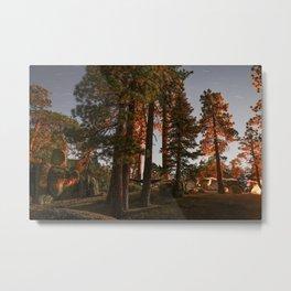 Mystical Night Forest (Big Bear, CA) Metal Print