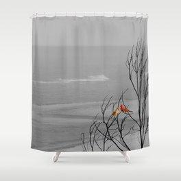 Red Cardinal Birds Black and White Beach Coastal A195 Shower Curtain